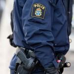 "Polisfacket: ""Rena vansinnet"""