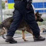 Polisen jagar fräck tjuv